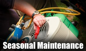 seasonal maintenance